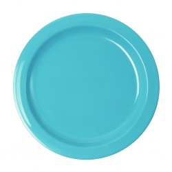 Dinner Plate Light Blue