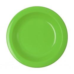 Soup Plate Kiwi