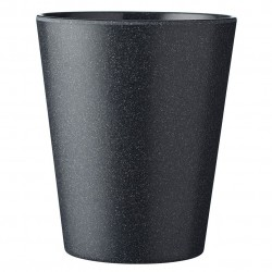 Cup Bloom