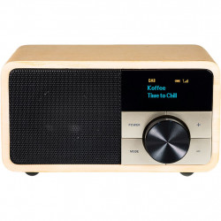 Digital Radio DAB+ 1 mini