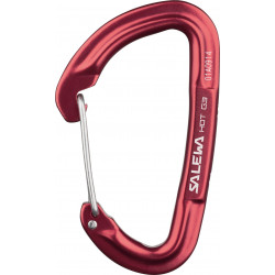 Salewa Carabiner Hot G3 wire
